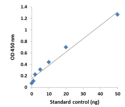Example Standard Curve.