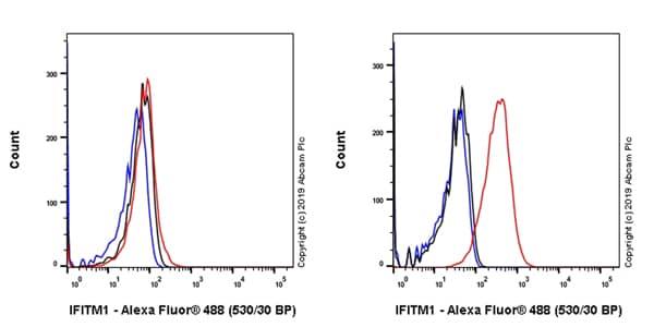 Flow Cytometry - Anti-IFITM1 antibody [EPR22620-12] (ab233545)