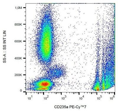 Flow Cytometry - PE/Cy7® Anti-Glycophorin A antibody [HIR2] - N-terminal (ab233579)
