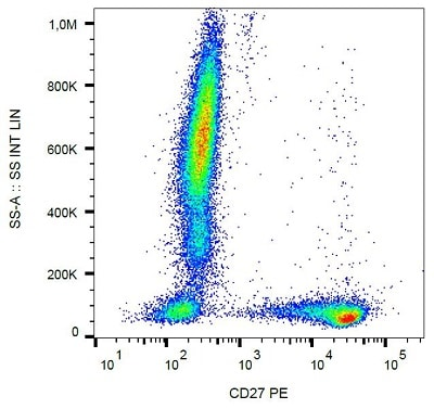 Flow Cytometry - Anti-CD27 antibody [LT27] (PE/Cy7 ®) (ab233581)