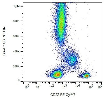 Flow Cytometry - PE/Cy7® Anti-CD22 antibody [IS7] (ab233583)