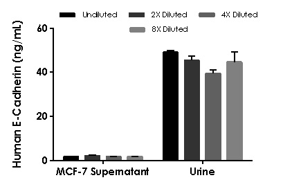 Interpolated concentrations of native E-Cadherin in human cell culture supernatant and urine samples.