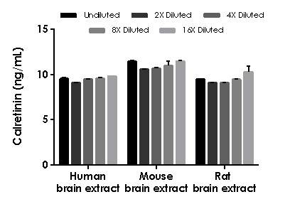 Interpolated concentrations of native Calretinin in human, mouse, and rat brain extract samples.