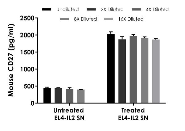 Interpolated concentrations of native CD27 in mouse EL4-IL2 cell culture supernatant samples, both untreated and treated with 10 µg/ml PHA and 10 ng/ml PMA for two days