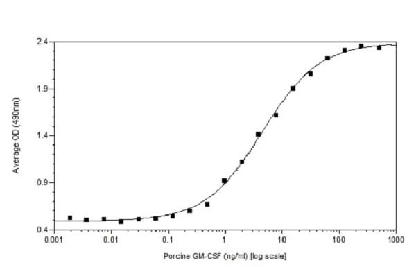 Functional Studies - Recombinant pig GM-CSF protein (Active) (ab233683)