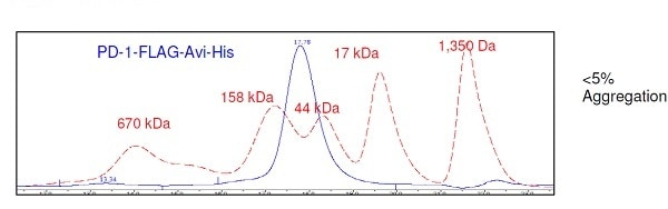 Size Exclusion Chromatography - Recombinant Human PD1 protein (ab233685)