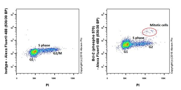 Flow Cytometry - Anti-Bcl-2 (phospho S70) antibody [EPR21162] - BSA and Azide free (ab233694)