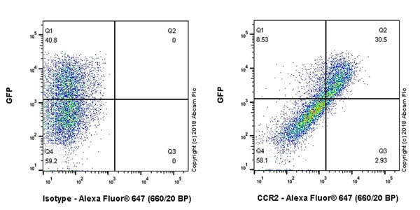 Flow Cytometry - Anti-CCR2 antibody [EPR20844] - BSA and Azide free (ab233701)