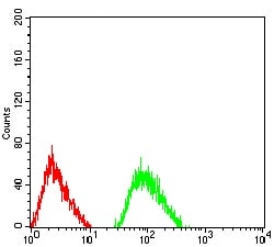 Flow Cytometry - Anti-NR3B antibody [2A8E11] (ab233708)