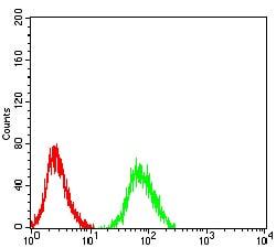 Flow Cytometry - Anti-CHRNA6 antibody [5B6G8] (ab233721)