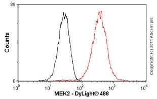 Flow Cytometry - Anti-MEK2 antibody [Y78] - BSA and Azide free (ab233731)