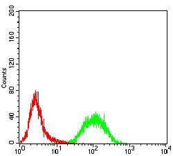 Flow Cytometry - Anti-RAB13 antibody [7G8A4] (ab233810)