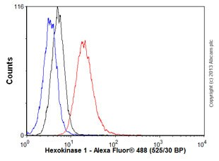 Flow Cytometry - Anti-Hexokinase 1 antibody [EPR10134(B)] - BSA and Azide free (ab233837)