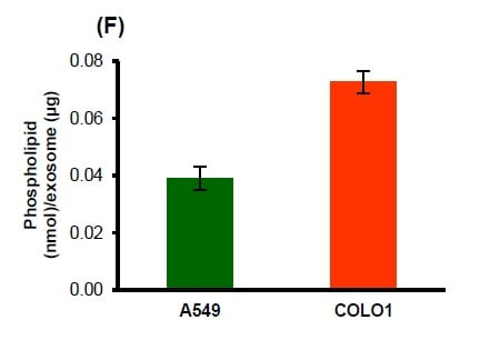 Determination of phospholipid in human lung (A549) and colon (M1049) carcinoma exosomes.