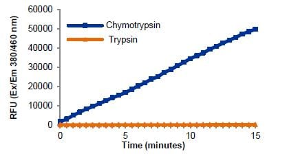 Reaction kinetics using substrate in the presence of Chymotrypsin or Trypsin.
