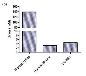 Measurement of urea in human urine (5 µL of 50 times diluted), human serum (5 µL) and 2% milk (20 µL).