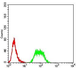 Flow Cytometry - Anti-ARD1A antibody [3G3B9] (ab234076)
