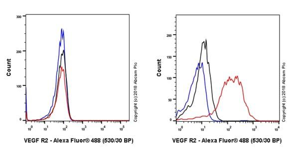 Flow Cytometry - Anti-VEGF Receptor 2 antibody [EPR21884-236] - BSA and Azide free (ab234106)
