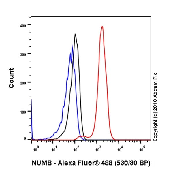 Flow Cytometry - Anti-NUMB antibody [EPR21988] - BSA and Azide free (ab234108)