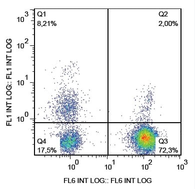 Flow Cytometry - Anti-NCAM1 antibody [LT56] (FITC) (ab234250)