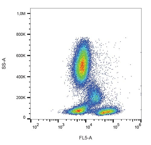 Flow Cytometry - PE/Cy7® Anti-CD28 antibody [CD28.2] (ab234276)