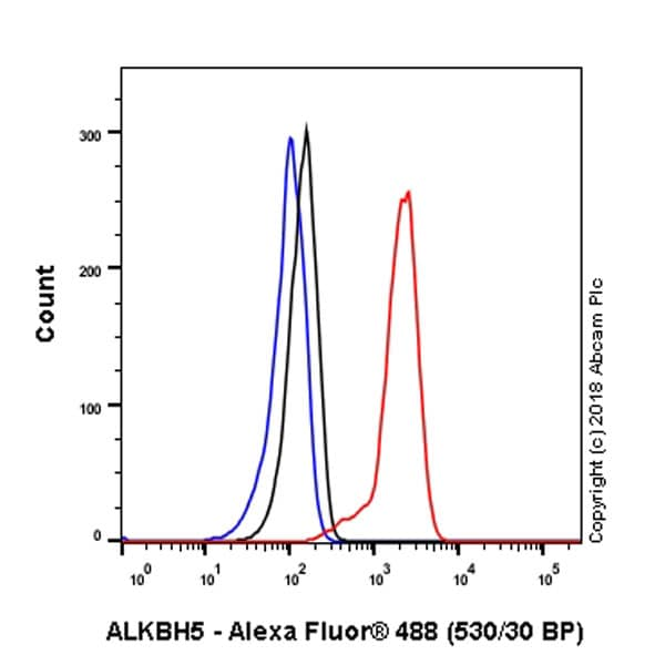 Flow Cytometry - Anti-ALKBH5 antibody [EPR18958] - BSA and Azide free (ab234528)