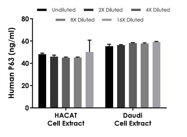 Interpolated concentrations of native P63 in human HACAT and Daudi cell extract samples based on 50 µg/mL and 500 µg/mL extract loads, respectively.