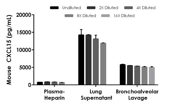 Interpolated concentrations of native CXCL15 in mouse plasma -heparin, lung supernatant and bronchoalveolar lavage samples
