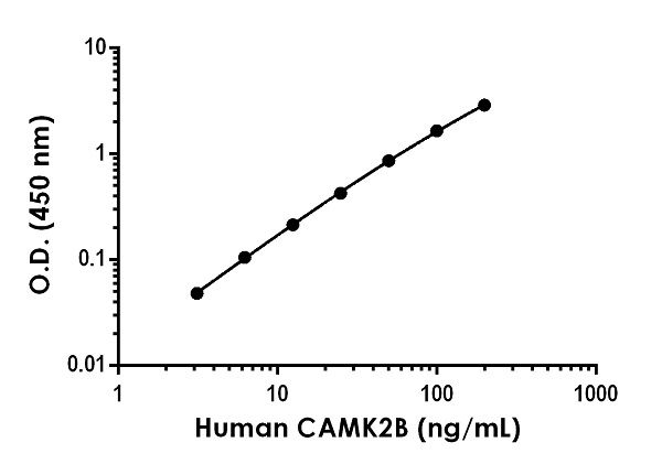 Example of human CAMK2B standard curve in 1X Cell Extraction Buffer PTR.