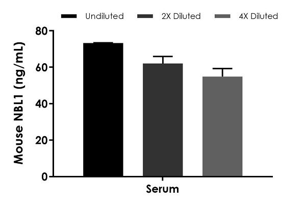 Interpolated concentrations of native NBL1 in mouse serum samples.