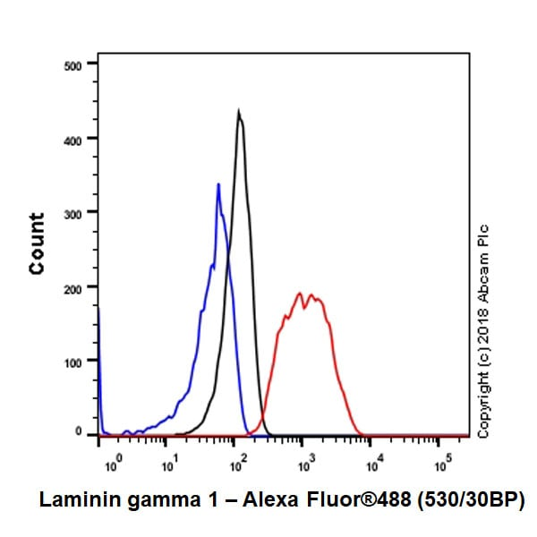 Flow Cytometry - Anti-Laminin gamma 1 antibody [EPR21199] - BSA and Azide free (ab234963)