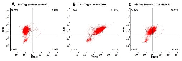 Flow Cytometry - Recombinant human CD19 protein (Active) (ab234966)