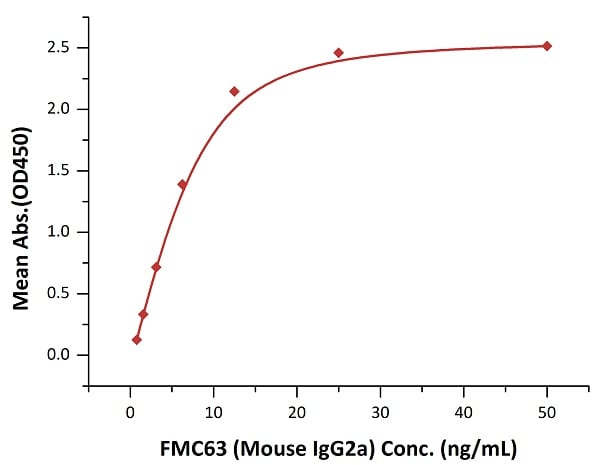 ELISA - Recombinant human CD19 protein (Active) (ab234966)