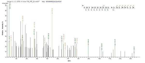 Mass Spectrometry - Recombinant Human Optineurin protein (His tag) (ab235021)