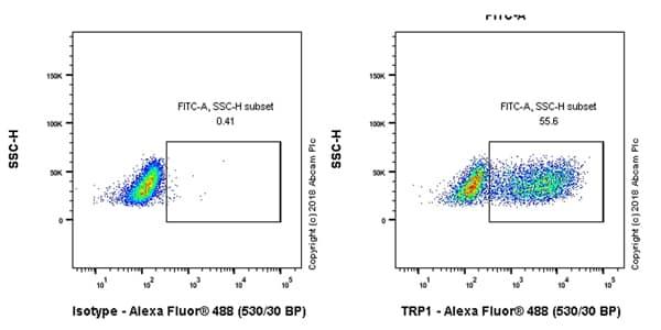 Flow Cytometry - Anti-TRP1 antibody [EPR21956] (ab235446)