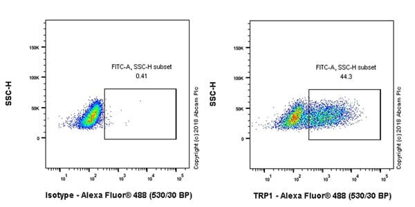 Flow Cytometry - Anti-TRP1 antibody [EPR21960] (ab235447)