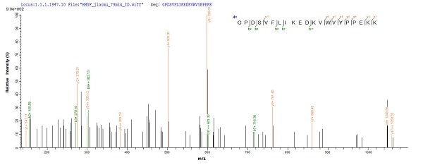 Mass Spectrometry - Recombinant Rat Hemopexin protein (His tag) (ab235568)