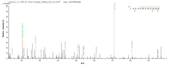 Mass Spectrometry - Recombinant Mouse AMH protein (ab235617)