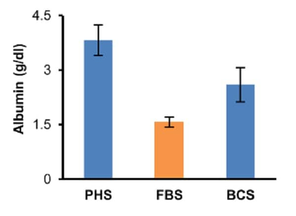 Albumin concentration in pooled human serum (PHS), fetal bovine serum (FBS) and bovine calf serum (BCS).