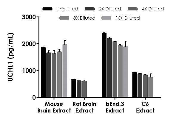Interpolated concentrations of native UCHL1 in mouse brain extract, rat brain extract, bEnd.3 cell extract (mouse), and C6 cell extract (rat) samples.
