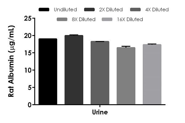 Interpolated concentrations of native Albumin in rat urine.