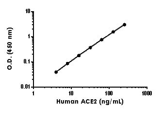 Example of human ACE2 standard curve in 1X Cell Extraction Buffer PTR.