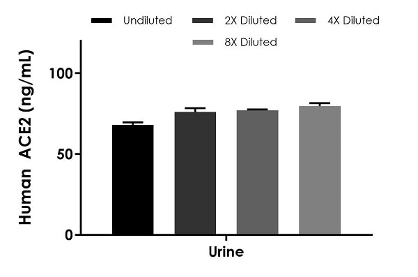 Interpolated concentrations of native ACE2 in human urine samples.