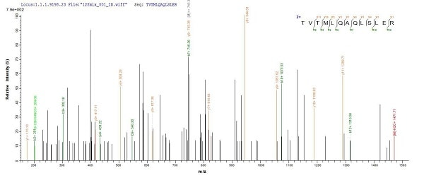 Mass Spectrometry - Recombinant Human CDR2 protein (His tag) (ab235677)