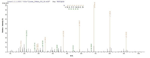 Mass Spectrometry - Recombinant Mouse CTLA4 protein (Tagged) (ab235718)
