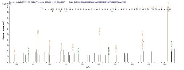 Mass Spectrometry - Recombinant Human Natriuretic Peptide Receptor A/GC-A protein (Tagged) (ab235810)