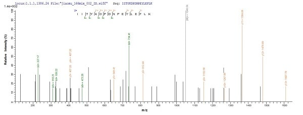 Mass Spectrometry - Recombinant Human NPR-A protein (Tagged) (ab235810)