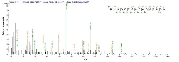 Mass Spectrometry - Recombinant Mouse Myoglobin protein (Tagged) (ab235821)