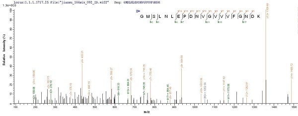 Mass Spectrometry - Recombinant Human ATP5A protein (Tagged) (ab235845)