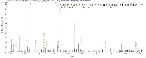 Mass Spectrometry - Recombinant Spike glycoprotein (His tag) (ab235851)